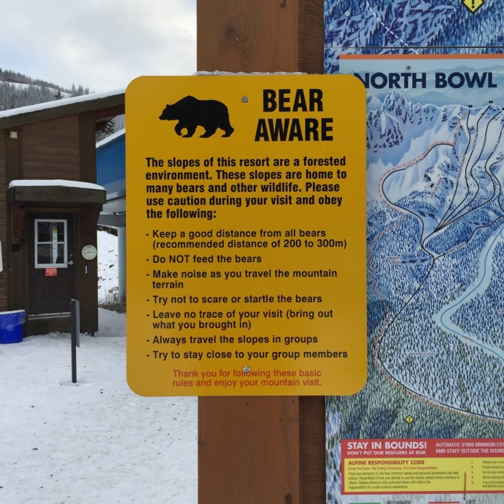 Good thing the bears are hibernating. I think, at least.