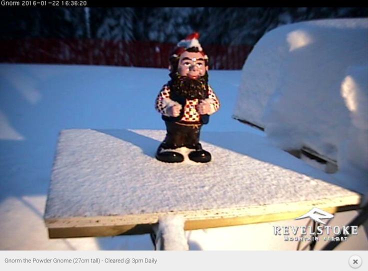 Gnorm, the powder gnome, can be seen on a webcam. The board he stands on is cleared of snow every day at 3pm. If you wake up in the morning and Gnorm cannot be seen - it's a huge powder day!
