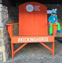 Pink rabbit rides the Kicking Horse.