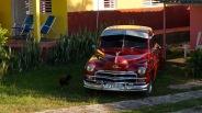 Classic Car VIII
